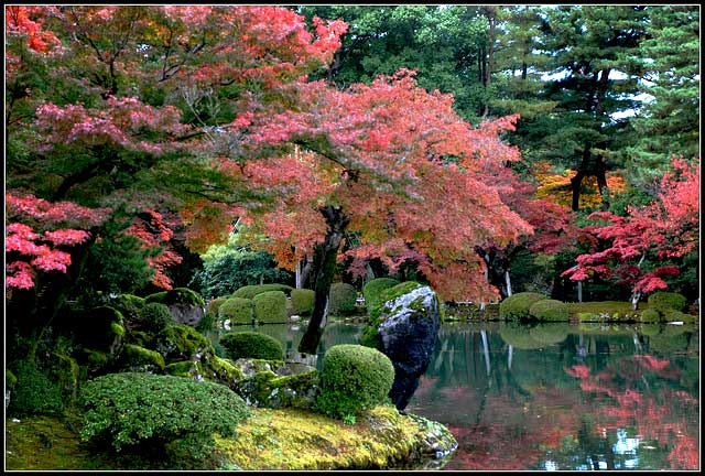 Mirando al mundo con sentimientos el jard n kenrokuen en - Jardines de japon ...