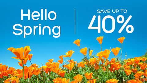 Hotels.com Save Big for Spring Break!
