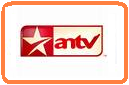 antv online live streaming