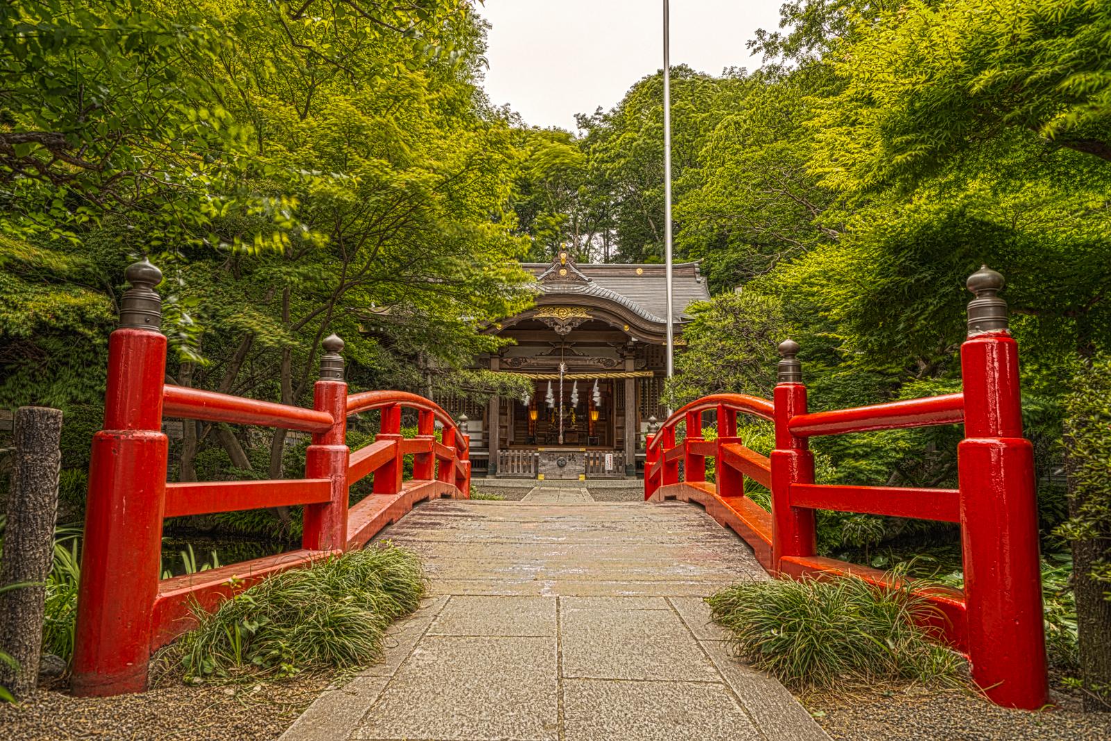 貫井神社、赤い神橋と本殿の写真