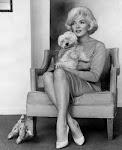Marilyn Monroe tenía un maltes