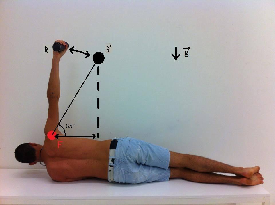USJ Funny Biomechanics: Brazo de palanca aplicado a la abducción de ...