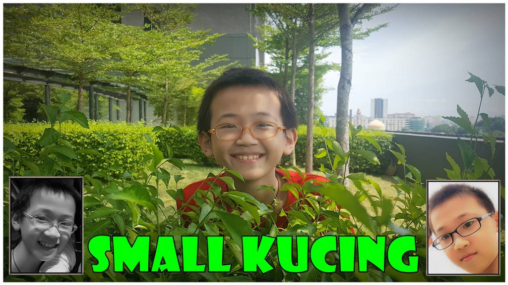 SMALL KUCING