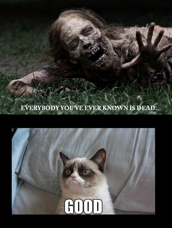 These Are Exactly My Feelings During Zombie Apocalypse!
