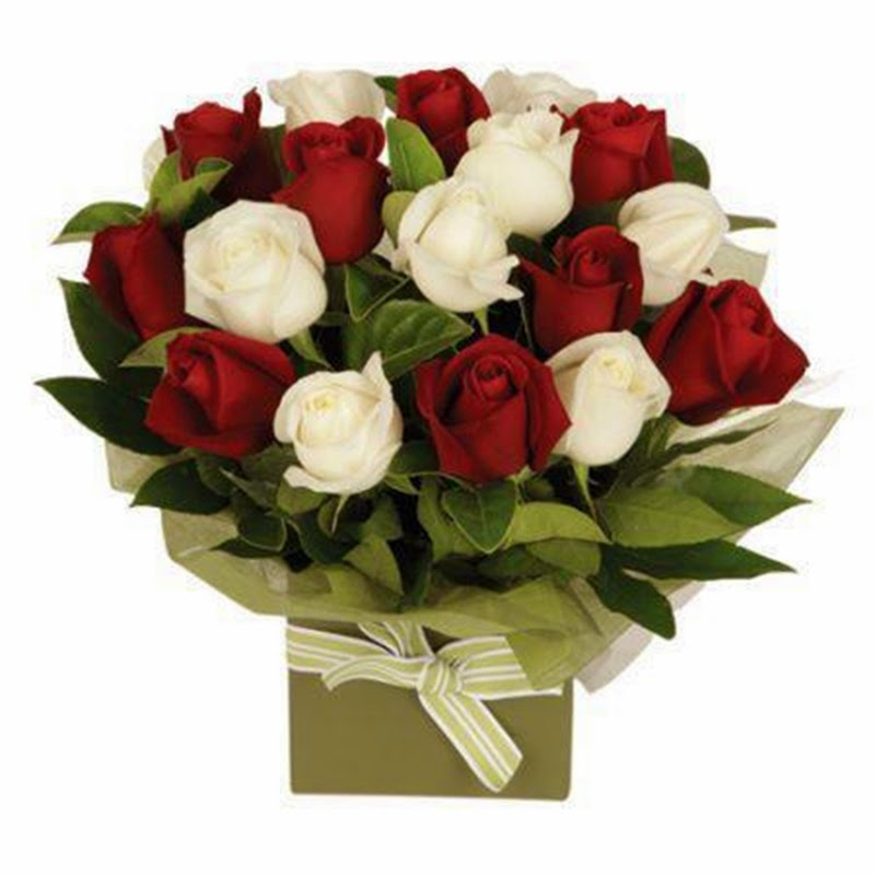 Beautiful Romantic Red and White Roses Flowers Bouquet Image Online