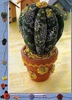 sal de cactus