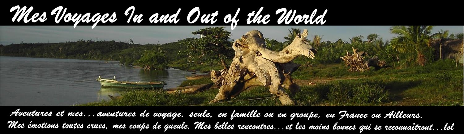 MES VOYAGES IN ET OUT OF THE WORLD