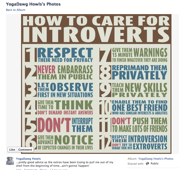 how to love your introvert