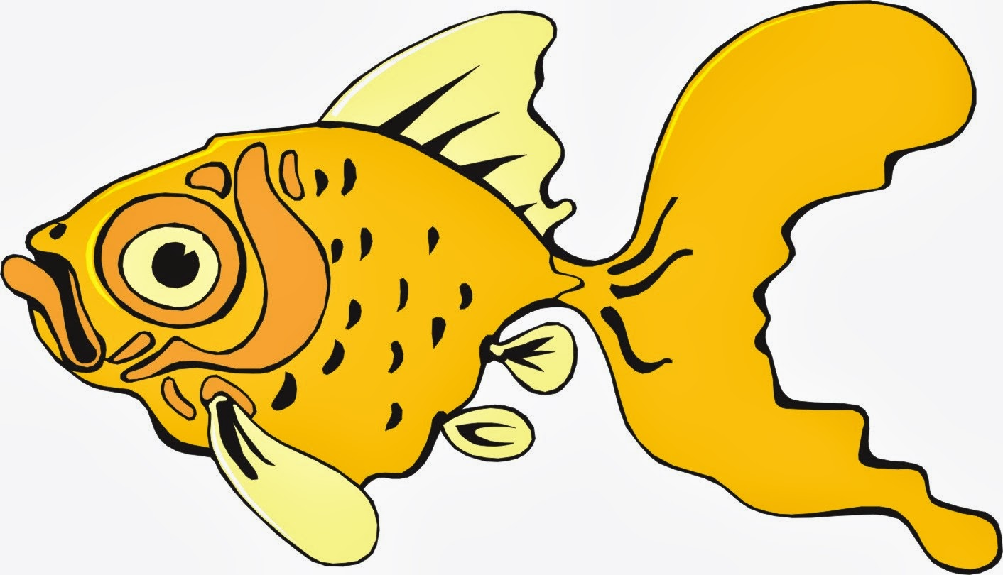 Funny Fish Cartoon Hd Wallpapers Top Hd Wallpapers