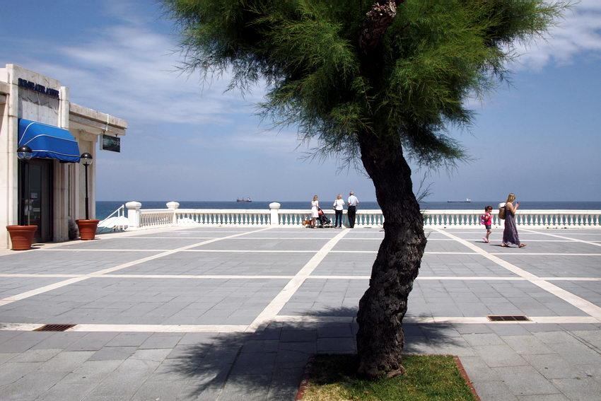 Largo pedonal na marginal de Santander. Uma árvore ao centro, algumas pessoas a passear e a observar a paisagem