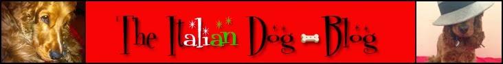 The Italian Dog Blog