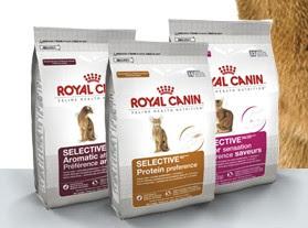 Amostra Gratis Ração para Gatos Royal Canin