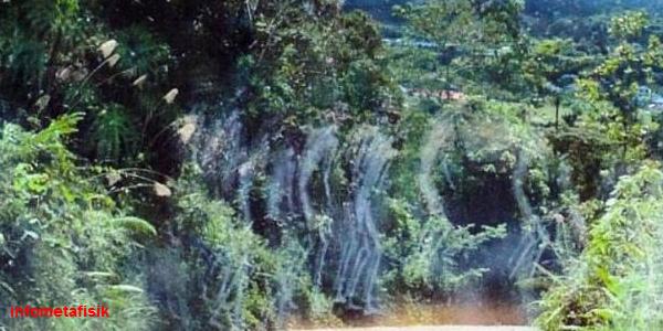 Ngeri! Ada Penampakan Hantu Tawanan Perang di Hutan Kalimantan