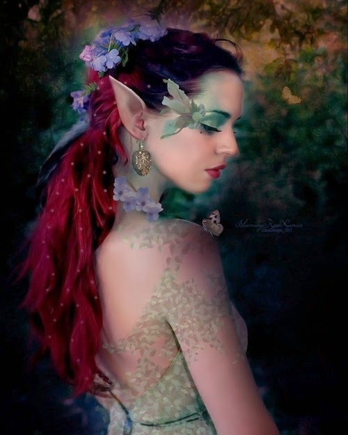 Beautiful Shy Elf