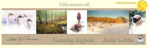 Gebbes Naturliga Dagbok