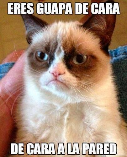 Grumpy Cat: Eres guapa de cara...
