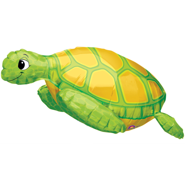 Party Animalz Party Shop: Mr. Turtle Comming Soon