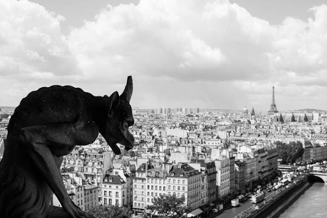 view of gargoyle and city of Paris from the top of Notre Dame Cathedral