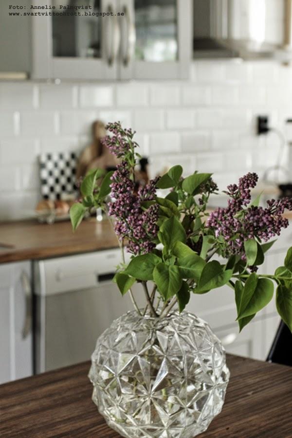syrén, syréner, blommor, vårblommor, bukett, buketter, syrénträd, vas, vaser, rund vas hemtex, kök, köket,