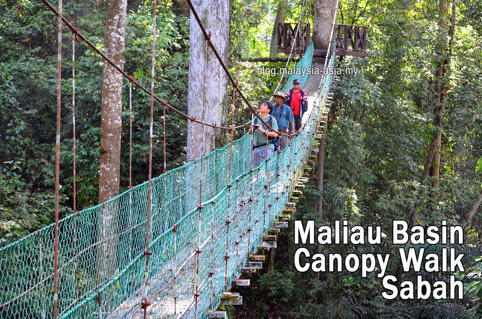 Maliau Basin Skywalk in Sabah