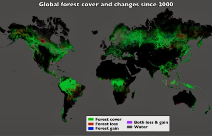 ATLAS OF THE DESFORESTATION IN THE FOREST