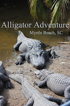 Alligator Adventure Myrtle Beach