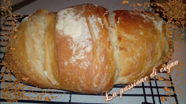 pane di semola rimacinata di concetta