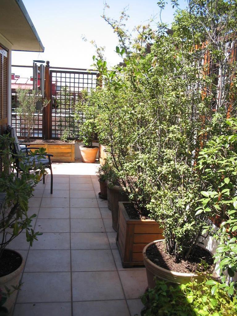 Taller paisajismo terrazas for Paisajismo terrazas