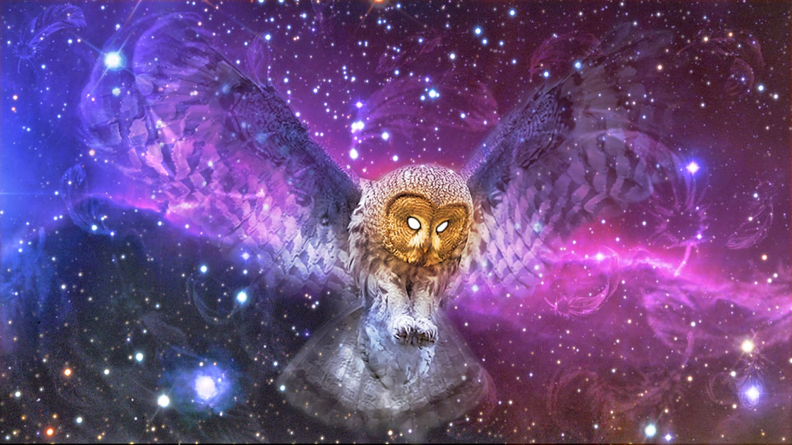 http://transudationism.blogspot.com/2014/02/the-wings-of-owl-of-minerva.html