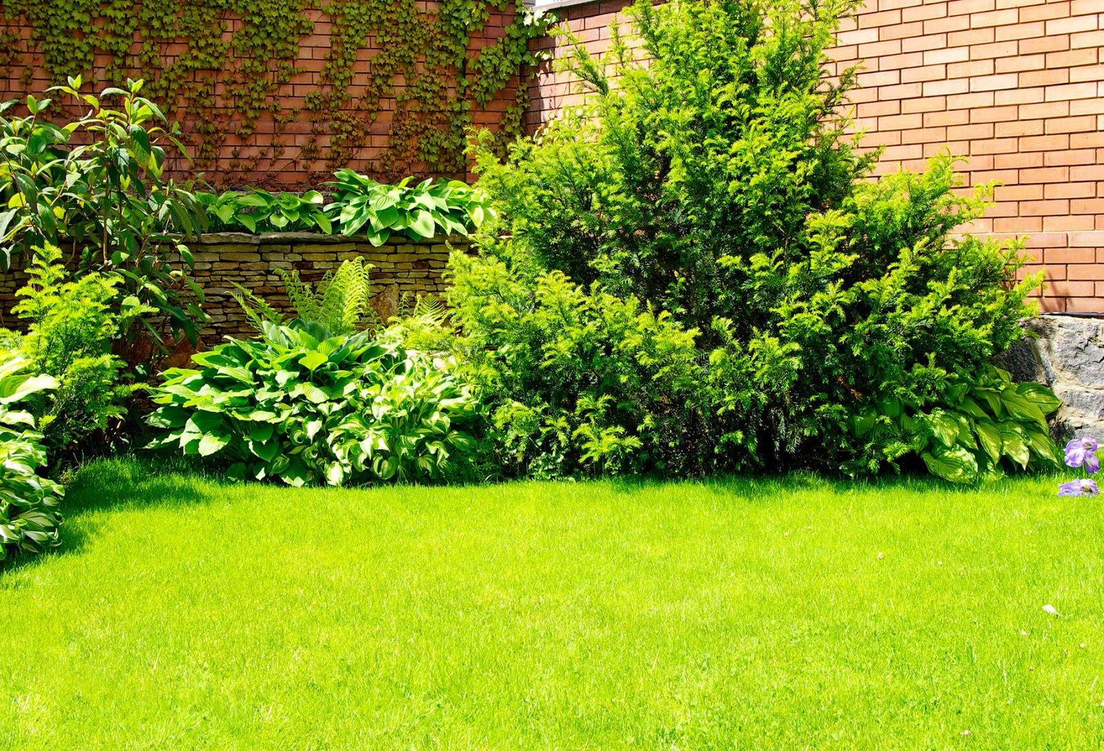 Im gene experience 9 fotos de jardines dise o exterior - Fotos de jardines ...