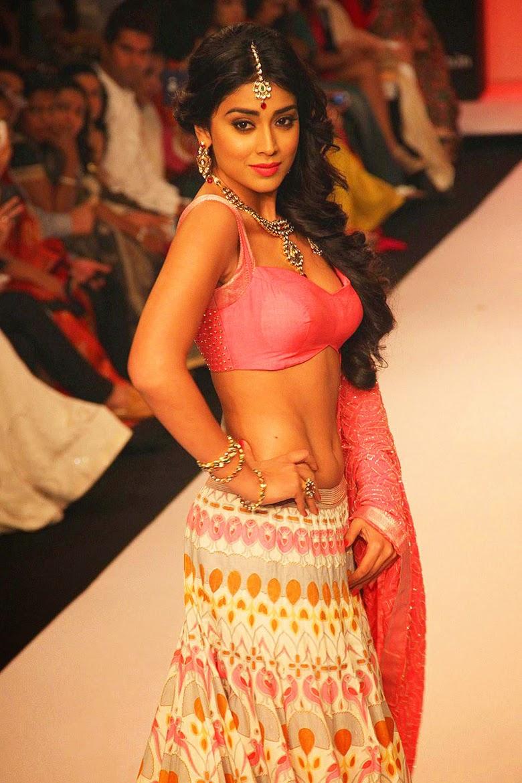 Shriya Saran Sexy: Shr... Ileana Dcruz 2013