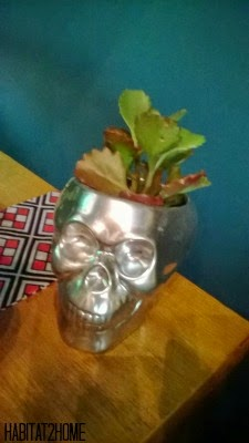 Mercury Glass Skull Succulent Planter