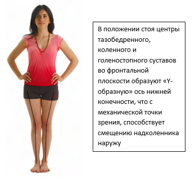 Как лечить коленные суставы если они хрустят