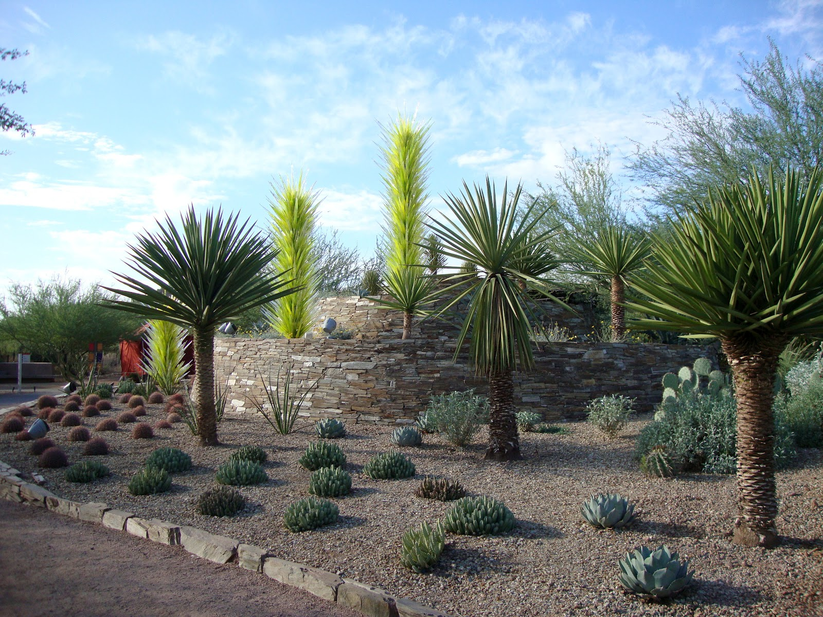 The Desert Botanical Garden, Part One