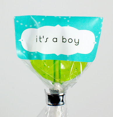 aqua blue it's a boy label on green vanilla-cardamom gourmet lollipop