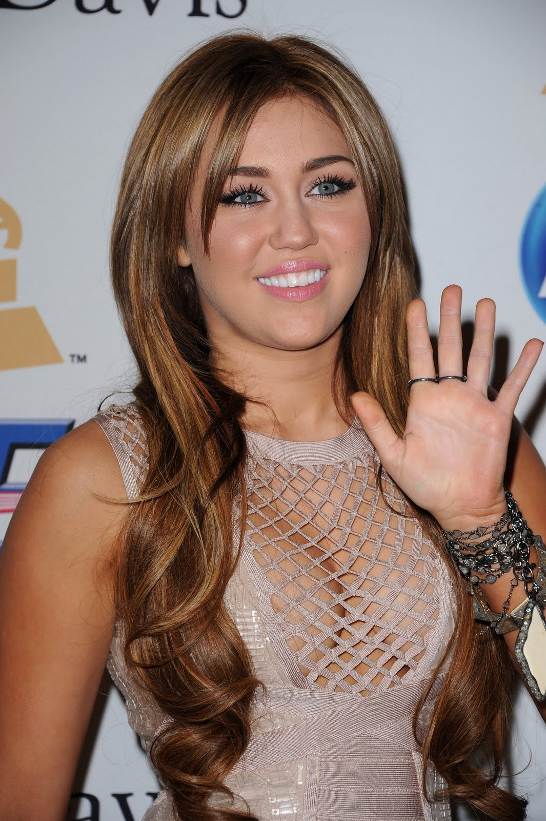 HOT CELEBRITY: Miley Ray Cyrus Hot Photo and Mini Biography