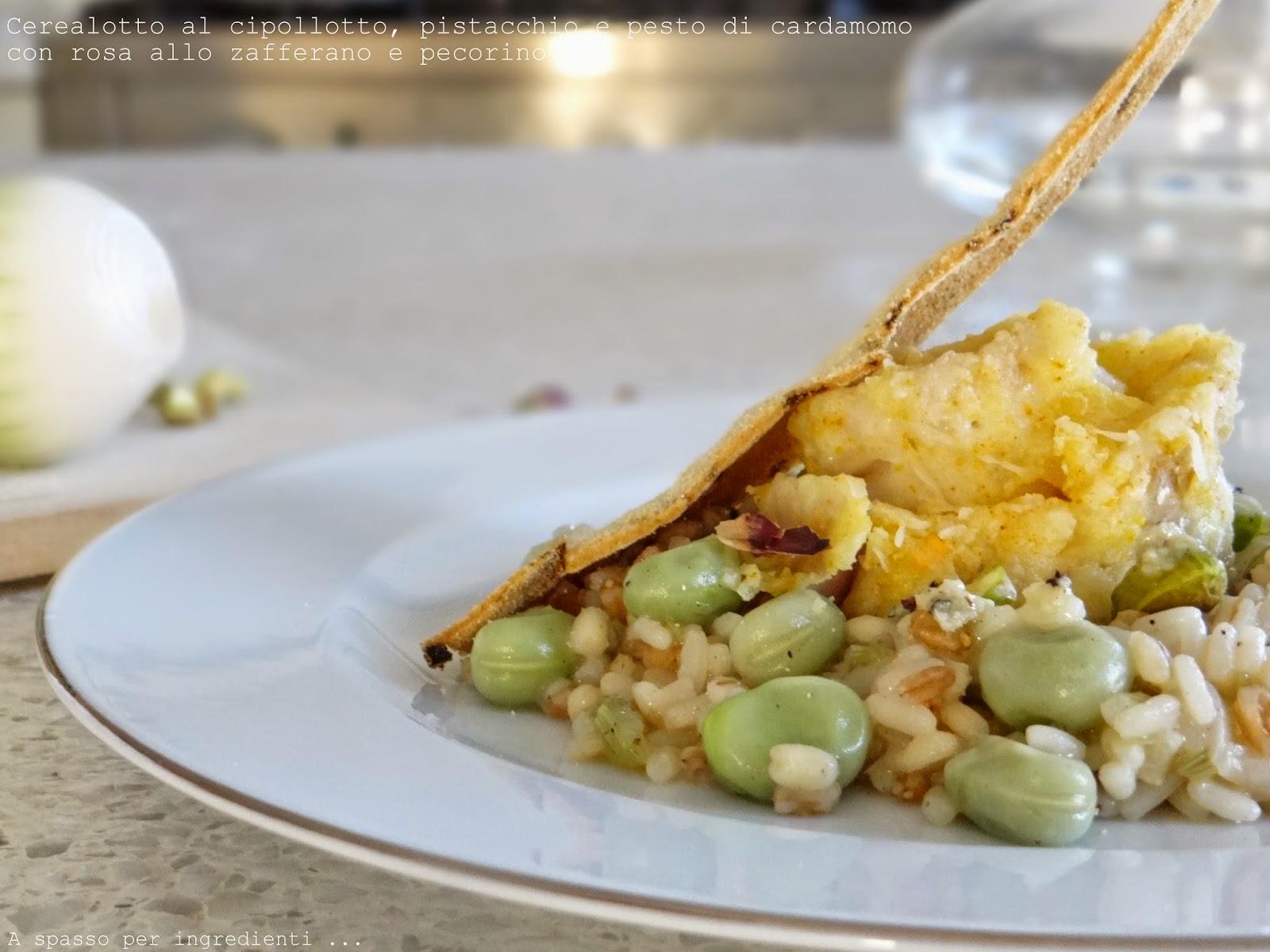 Ricetta cerealotto al cipollotto, pistacchio e pesto di cardamomo con rosa allo zafferano e pecorino, per un vecchio concorso