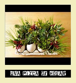 http://www.unapizcadehogar.com/2014/10/diy-maceteros-cascaras-huevo-tallerdecreatividad.html