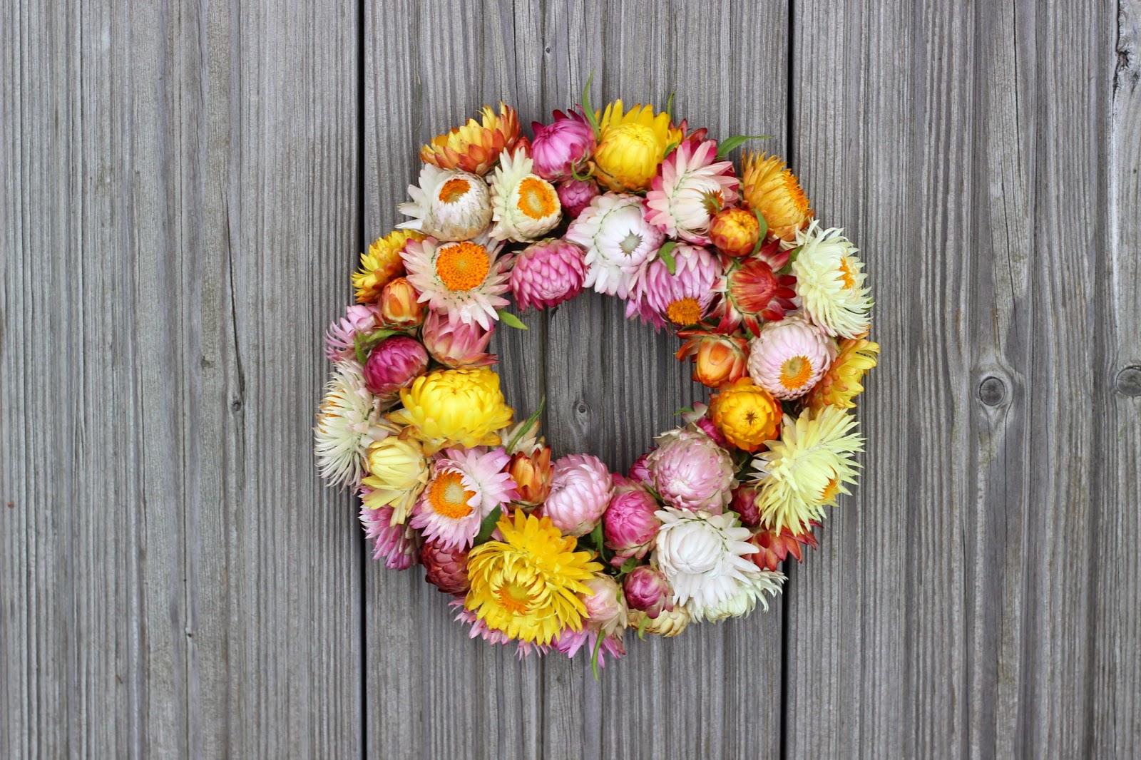 Strohblumen Trocknen buntistschön creadienstag mit blumen