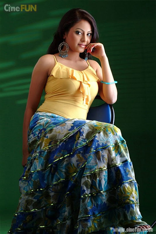 Meenakshi Latest Photoshoot sexy stills
