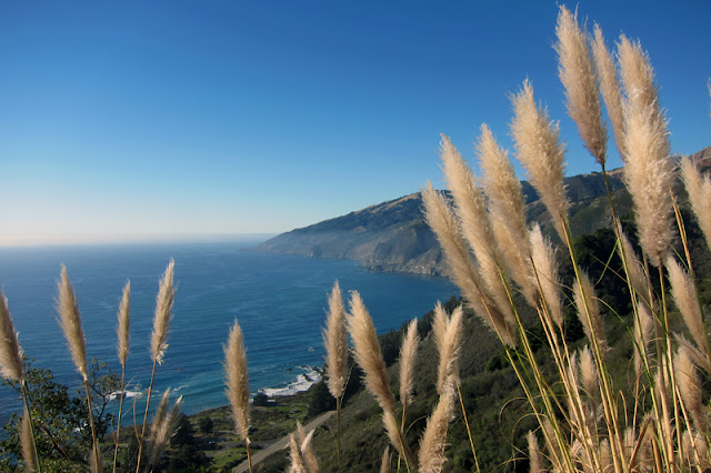 Big Sur Roadtrip