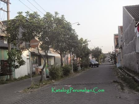 Jalan utama Alam Pesona1