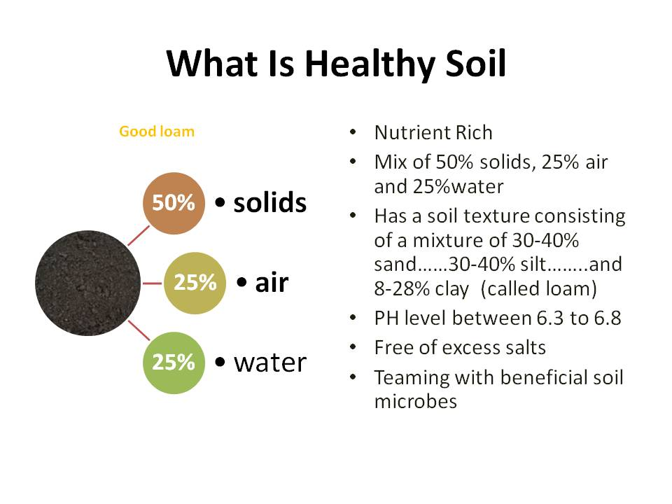 Healthy soil for What is soil