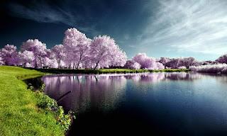 Wallpaper pemandangan alam hebat gambar wallpaper foto pemandangan