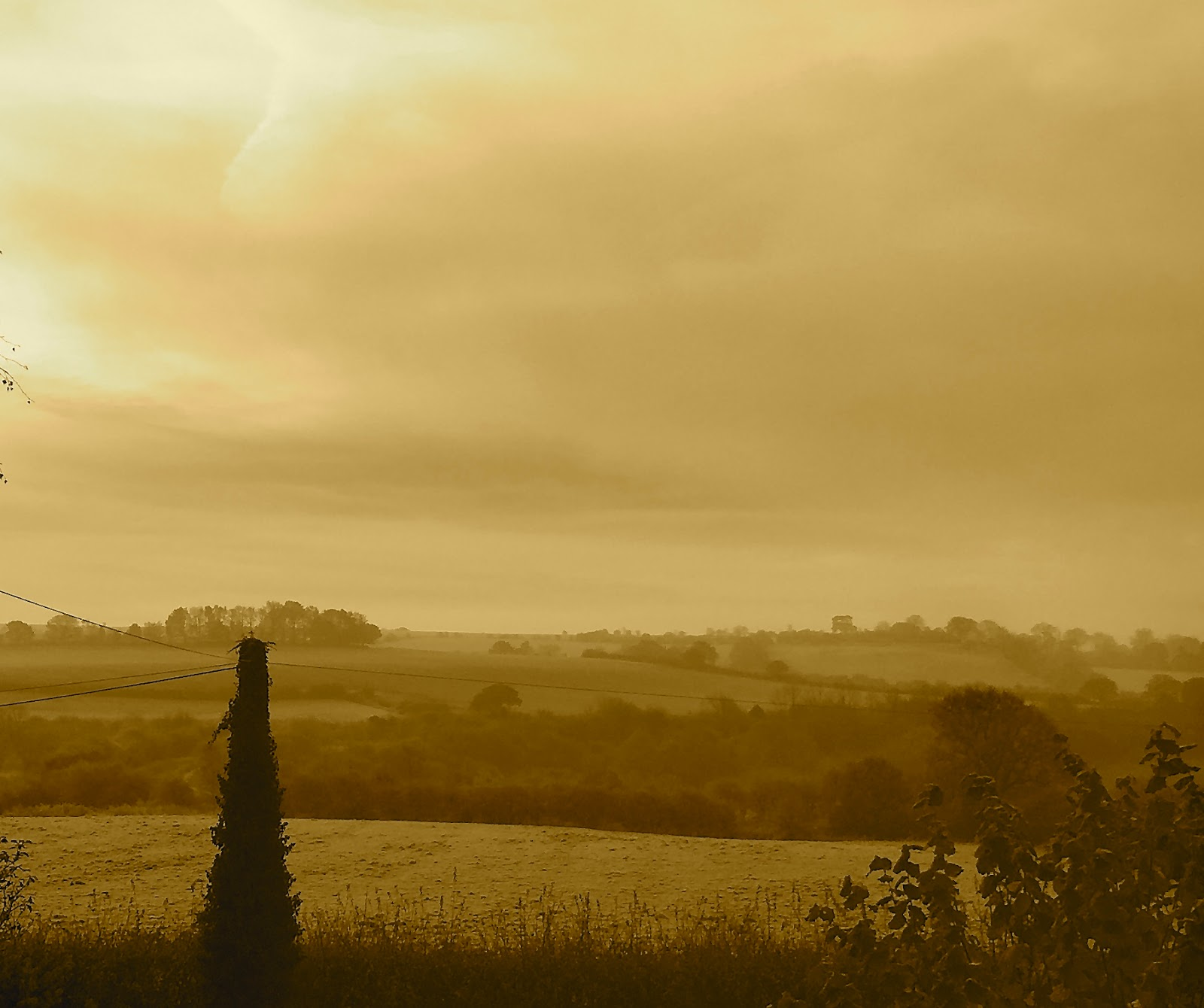 Morgan's Milieu   Thankful: A darkened view of a grassy field