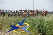 Passeio a cavalo da Tertúlia São Pedro do Montijo