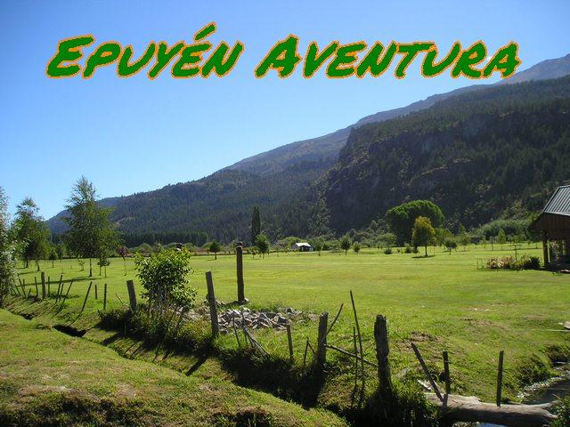 Campo Patagónico - Patagonia Andina