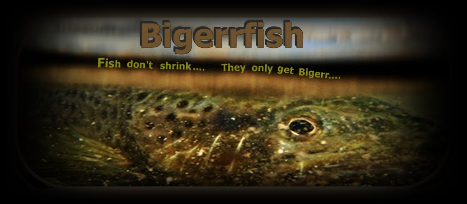 Bigerrfish