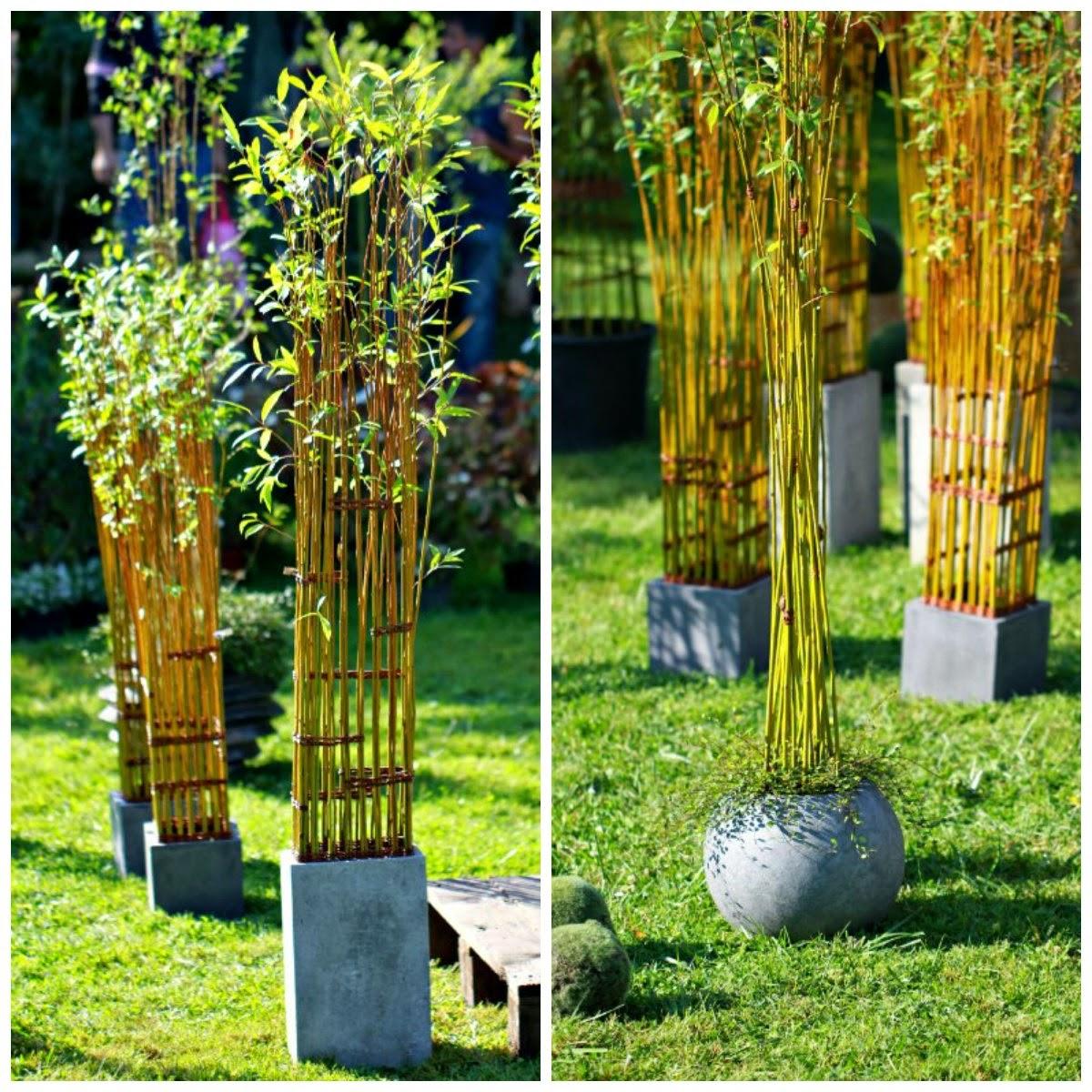 Le jardin des poussins oser l 39 osier vivant for Jardin en seine 2015