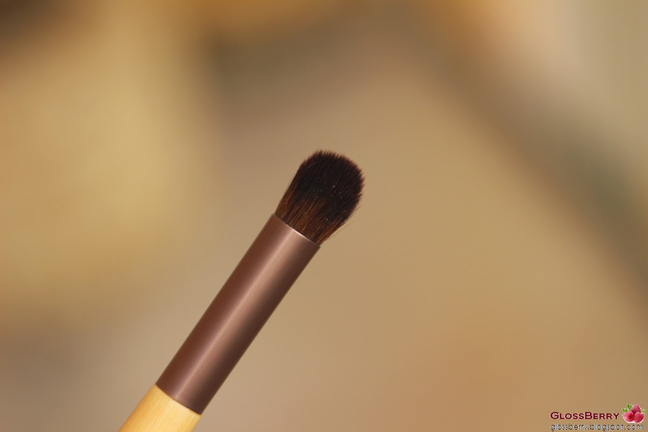 airbrush concealer מברשת קונסילר אקוטולס iherb